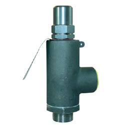 Stainless Steel Proportional Lift Relief Valve