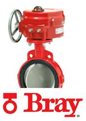 Bray Butterfly Valves