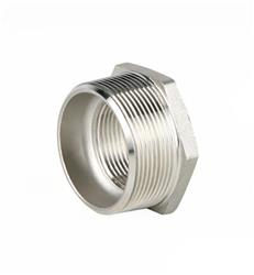 Pipe Fittings | Genebre 0241 | SS 150lb BSP Hex Reducing Bush
