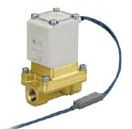 VXS2 Pilot Operated Solenoid Valve foe Steam