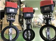 J+J electric actuated valves, EBRO High Performance butterfly valves